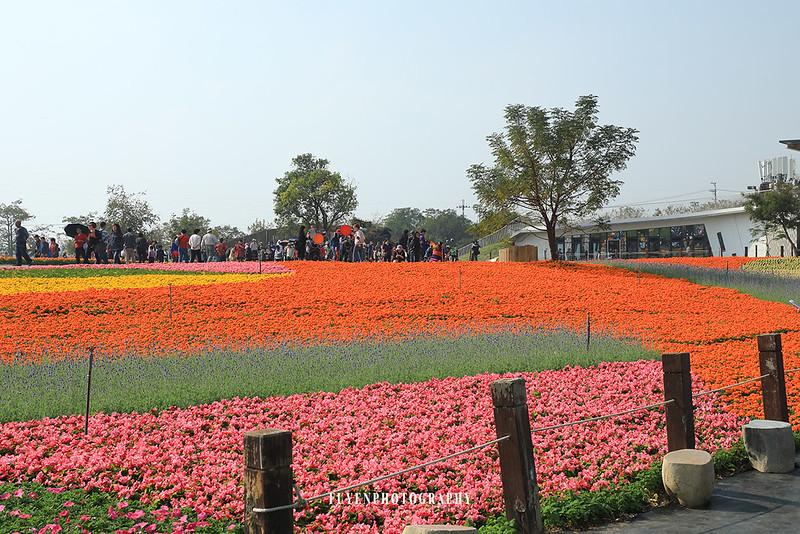 2017臺中國際花毯節38