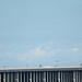 ANA B767 JA8569 on D-runway in Haneda Airport 9