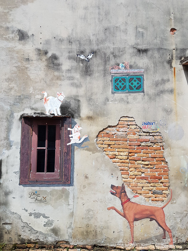 songkhla old town street art dogs and cats