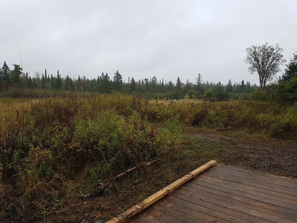 Palgrave Forest and Wildlife Area