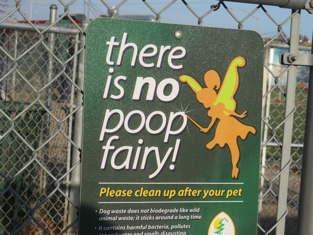 There Is No Poop Fairy Rich Flickr