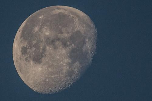 Selchuk Moon