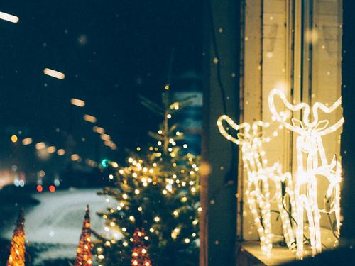 Reindeer at Pankstraße