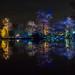 Dunham Christmas Illuminations - the gardens