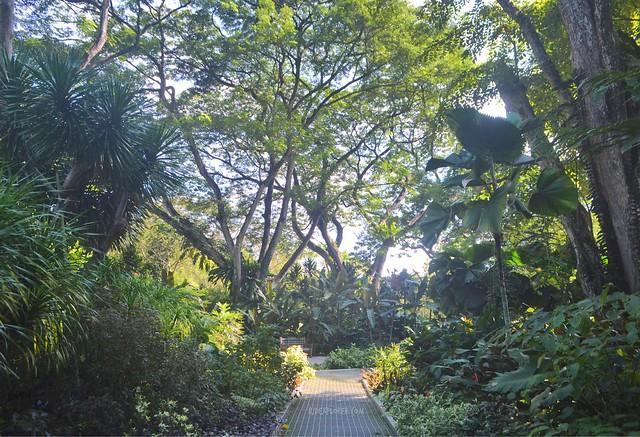singapore first timer Singapore Botanic Gardens