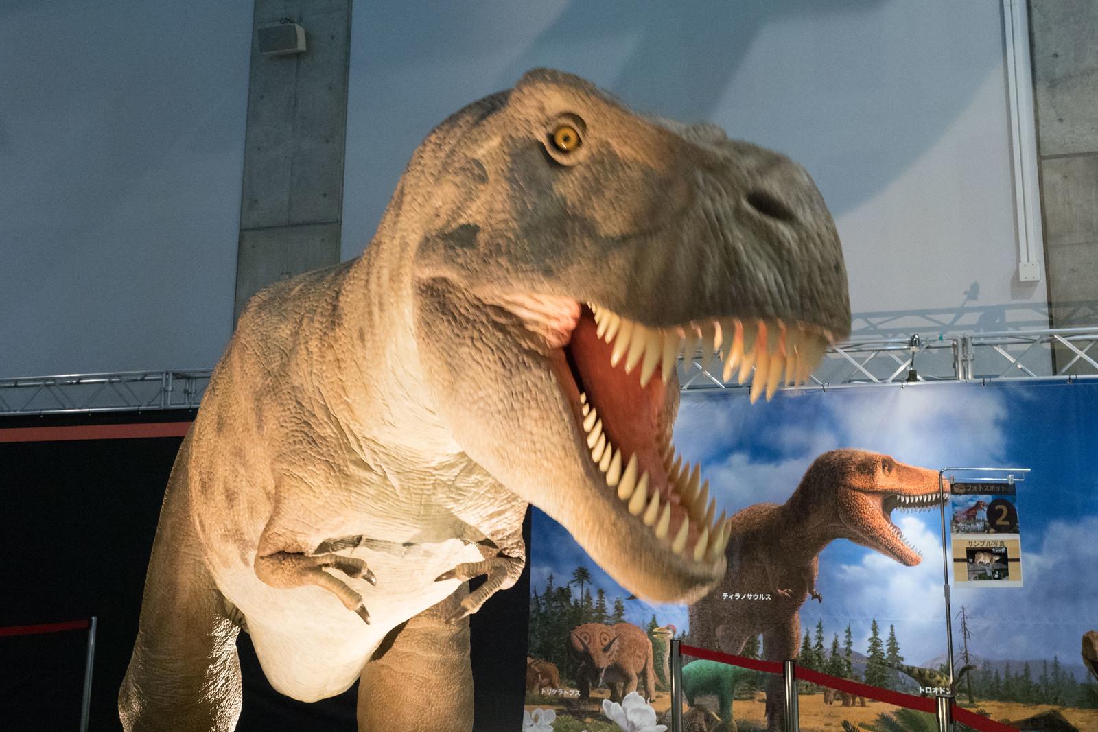 大恐竜博-51