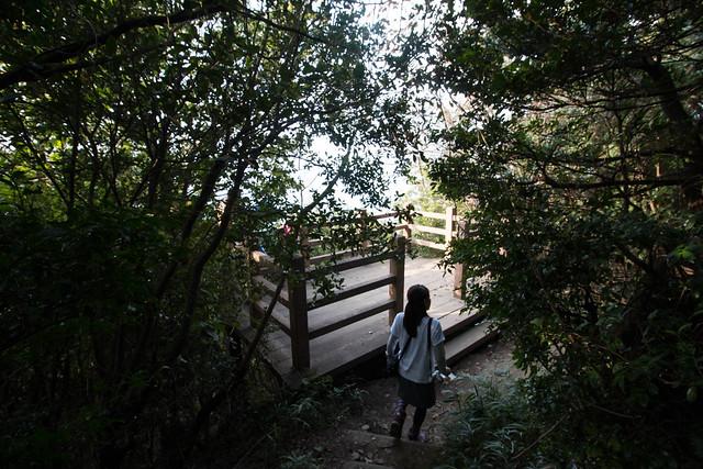 20161106_飯野山(讃岐富士)_0132.jpg