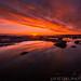 Sunrise at Whitley Bay