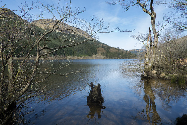 Loch Eck from Jubilee Point on the Lochs eastern shore
