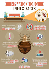 13350---Matt-K---NPMA-Bed-Bug-Info-&-Facts-V1
