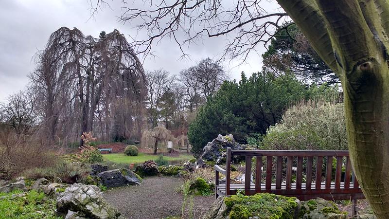 Jardín Botánico el jardín botánico de gante - 38606985695 12b1c98bba c - El Jardín botánico de Gante