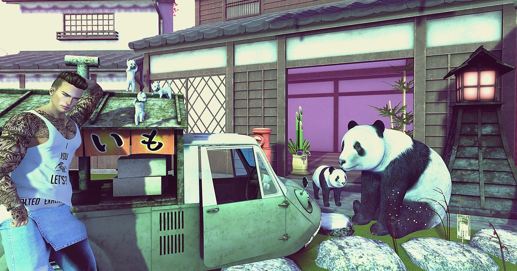 Close Encounters of the Third Kind ... with pandas