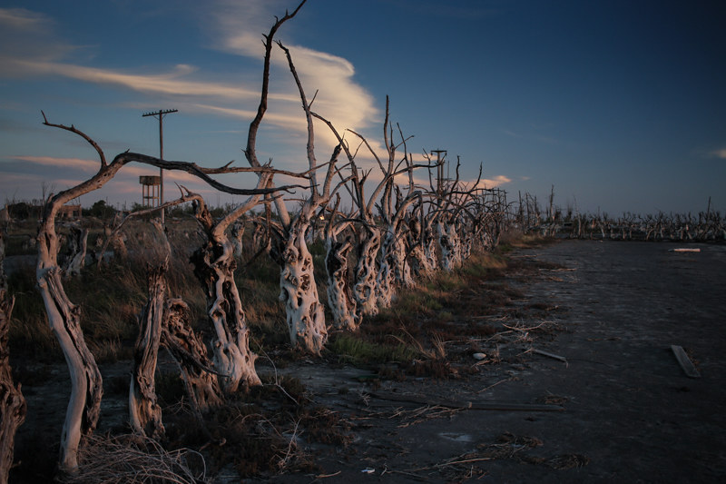 epecuen-800px-6681