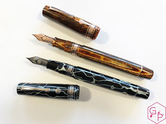 Review @ASCPens Bologna Wild Dark Side Fountain Pen - Magic Flex 15