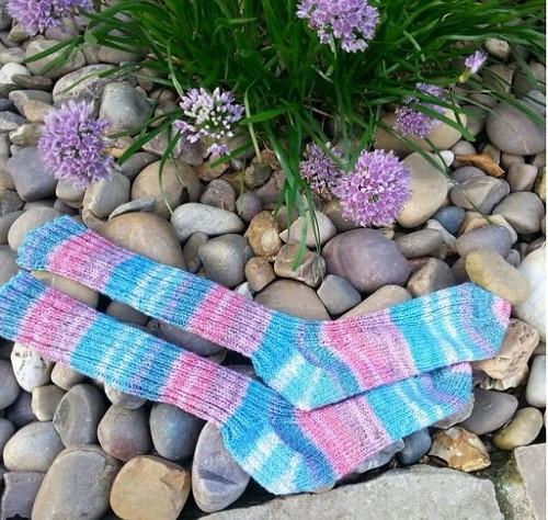 Socks for Moo