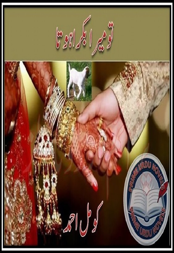 Tu Mera Bakra Hota Complete Novel By Komal Ahmed