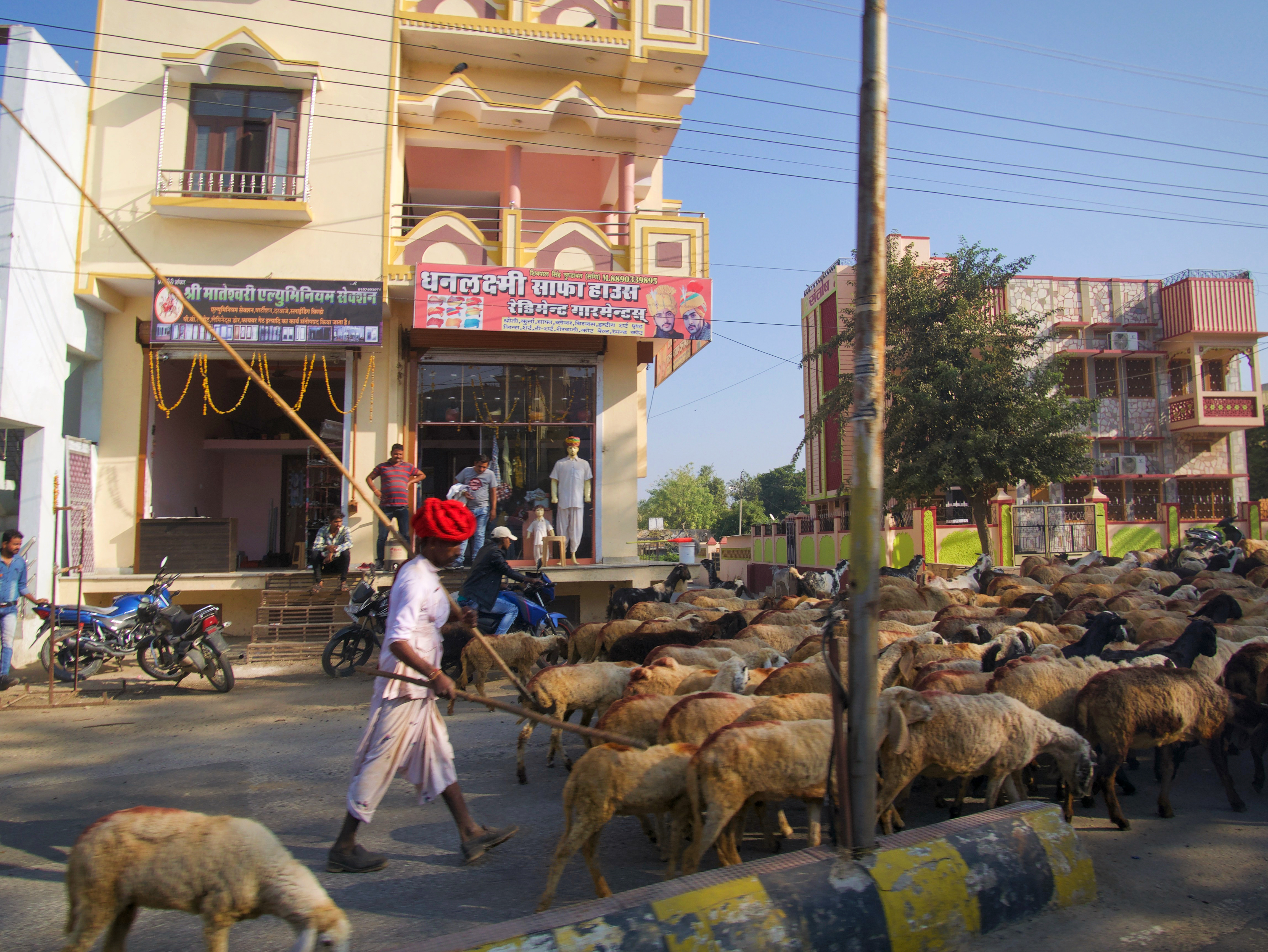 677-India-ontheroad