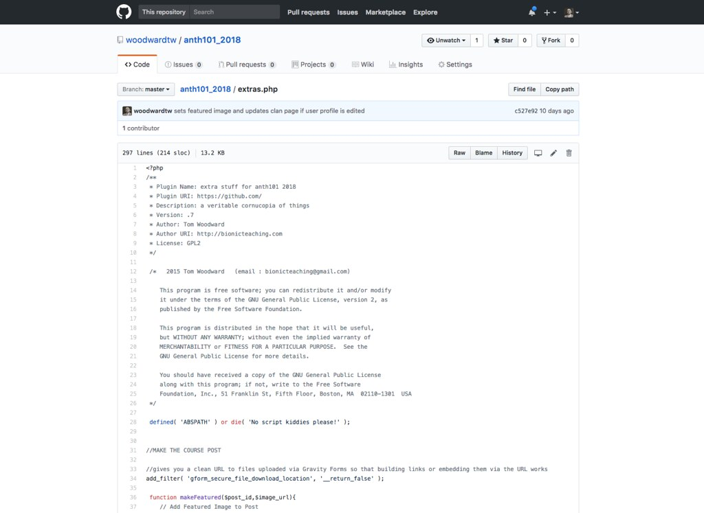 screenshot of a github repository