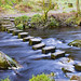 Stepping Stones, Hardcastle Crag