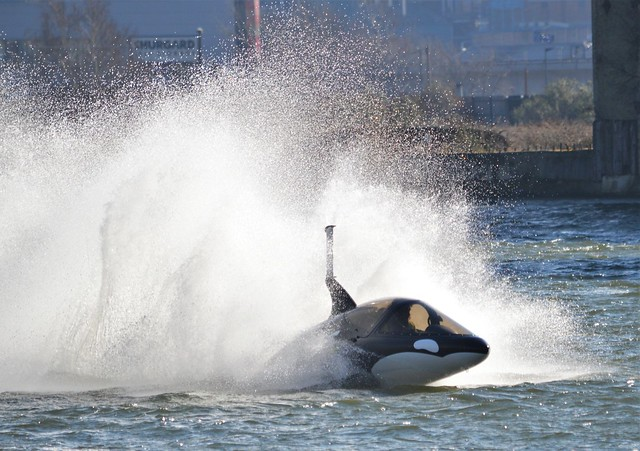 Seabreacher Killer Whale (4) @ Royal Victoria Dock 25-02-18