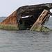 Concrete Ship SS Atlantus (1918) Remains