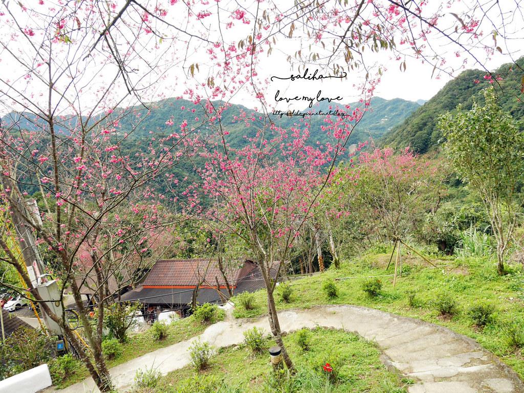 三峽一日遊景觀餐廳推薦花岩山林 (34)