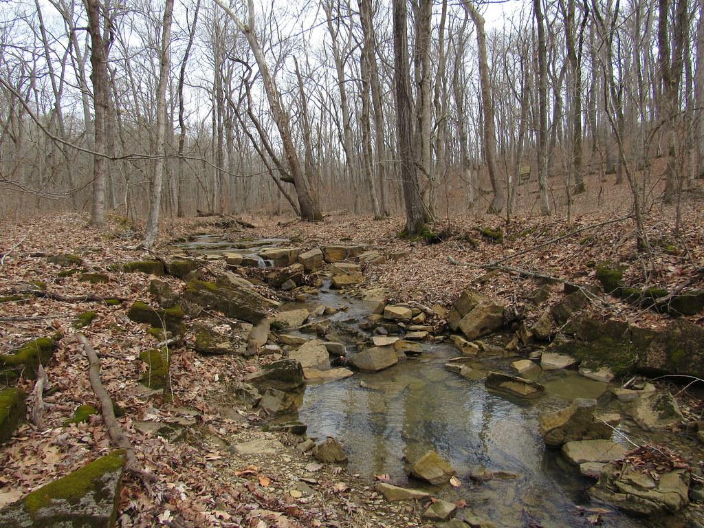Whoopie Cat Mountain creek
