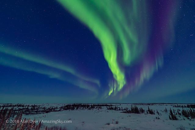 Aurora in Blue Twilight