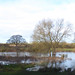 The Stour in Flood