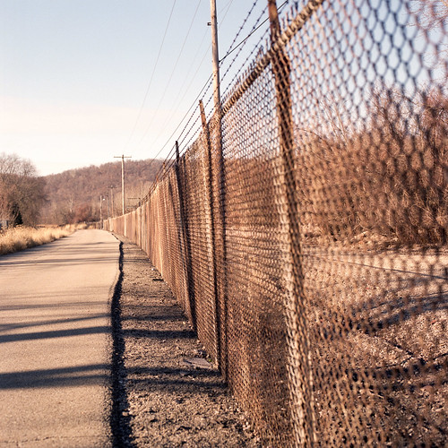 Afternoon fence