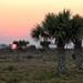 Sunset on Yucatan por Chemose
