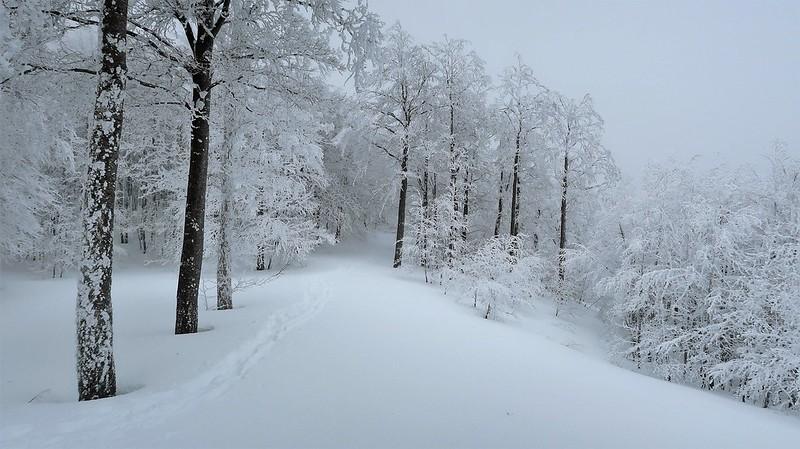Sneznik, SLOVENIA, February 2018