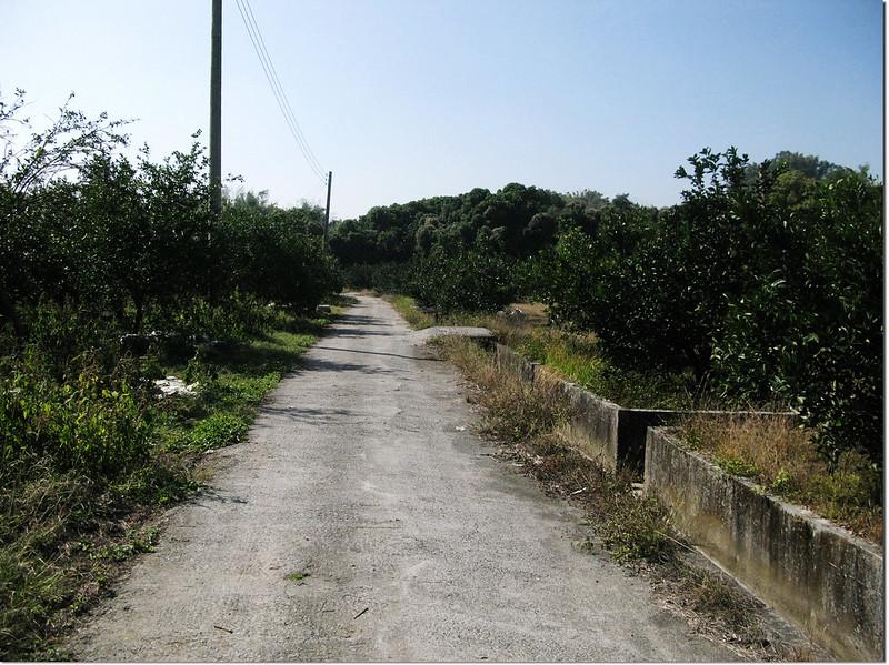 馬斗欄柑橘園