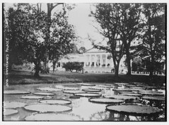 Java - Governor's Palace (LOC)