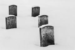 Bluff City Cemetery Snow ©2018 Lauri Novak-3