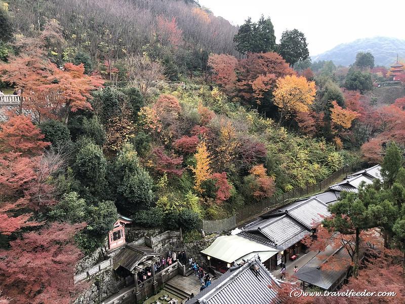 Autumn color Kyoto