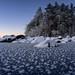 Frosty ice world by Kari Siren
