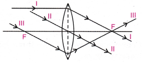 cbse-class-10-science-practical-skills-image-formation-by-a-convex-lens-15