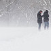 Blizzard by marktmcn