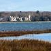 IMG_1821 - Netley Castle - Southampton Water - 01.02.18