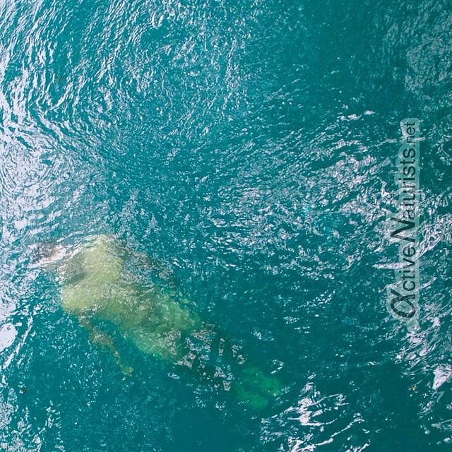naturist swimming 0006 Cenote Azul, Chetumal, Quintana-Roo, Mexico