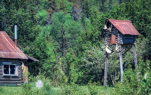 Secluded cabin - Alaska