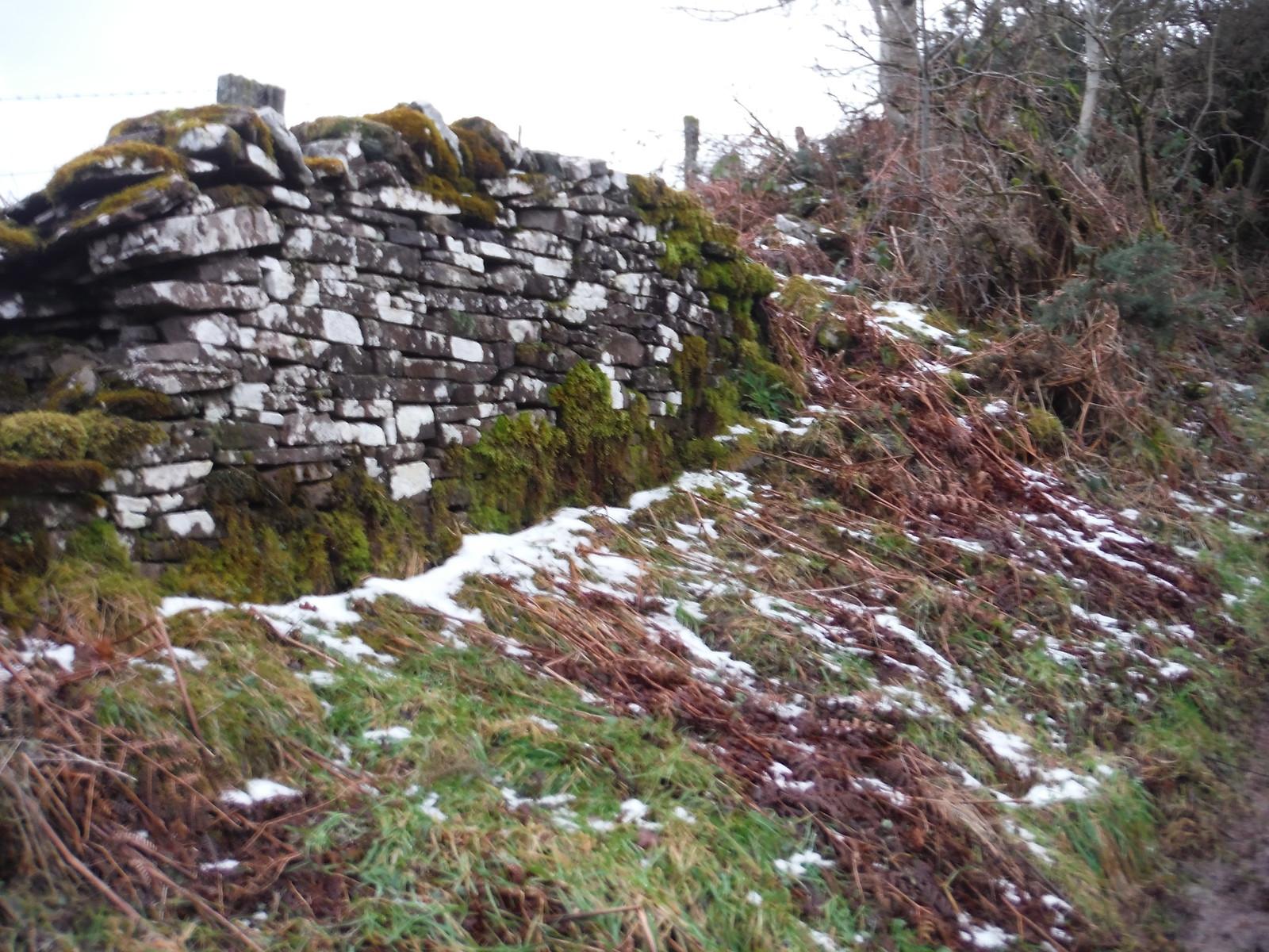 Snow and Lychen: Allt yr Esgair SWC Walk 308 - Bwlch Circular (via Mynydd Troed and Llangorse Lake)