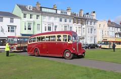 East Kent 101 Bus Rally.