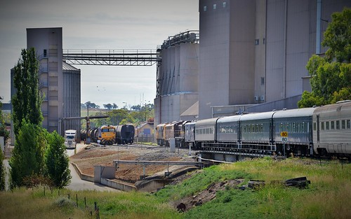 8178+48xx watch on with their grain train as 42103+4204+4716 lead the