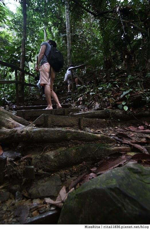 馬來西亞自由行 馬來西亞 沙巴 沙巴自由行 沙巴神山 神山公園 KinabaluPark Nabalu PORINGHOTSPRINGS 亞庇 波令溫泉 klook 客路 客路沙巴 客路自由行 客路沙巴行程61