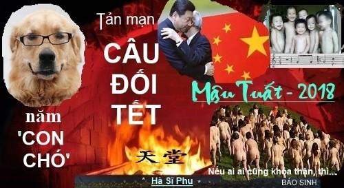 cau_doi_Tet_hsp01