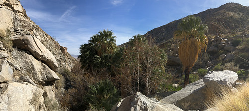 Borrego Springs - Pano from Hellhole trail
