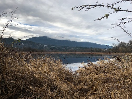 Nanaimo - Buttertub Marsh view