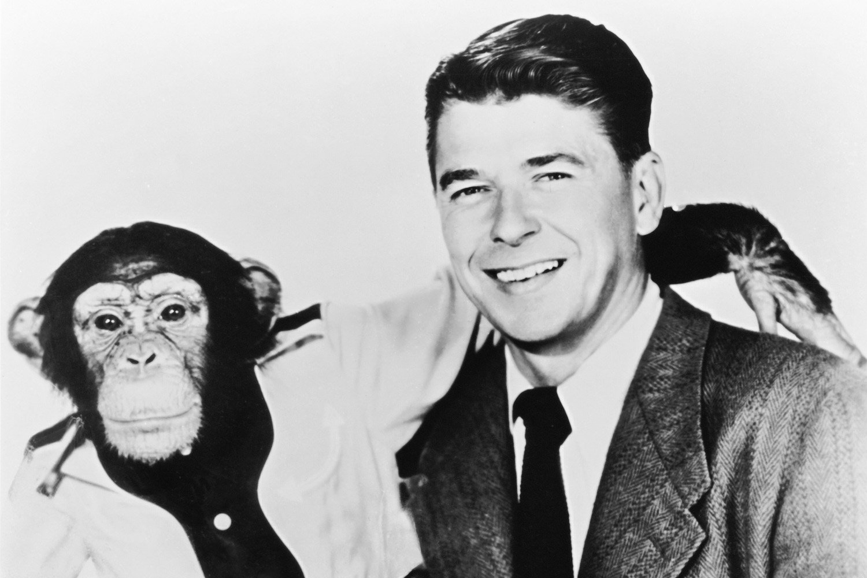 Ronald Reagan in Bedtime for Bonzo, 1951